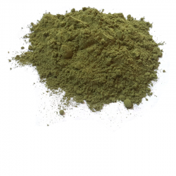 Mulukhiyah 